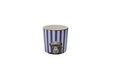Porland Wild Life Monkey Bardak 230Cc Renkli
